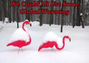 Where is the Global Warming?