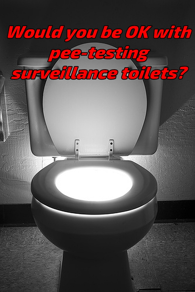 Toilet Light