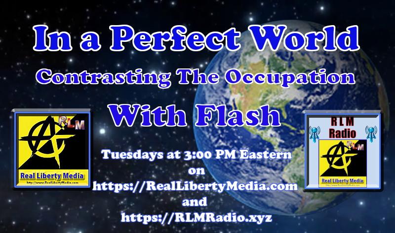 In a Perfect World cover - 16x9-3pm